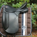 Lusitano DP Exclusive