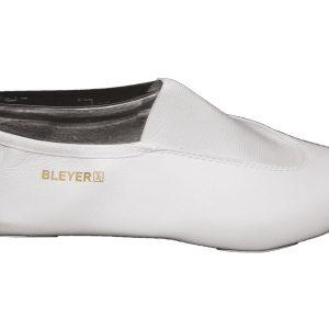 25161-Bleyer-Seite
